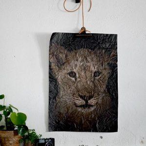 canvas-kreukel-poster-canvasposter-fotoprint-tijger-sepia-geredde-tijgers-stichting-fileda-nijeberkoop-fabryk-design